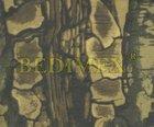 tkanina, vrchní zátěr PVC 250gr/transparent-bavlna tisk kámen-khaki-š.142 cm - výprodej